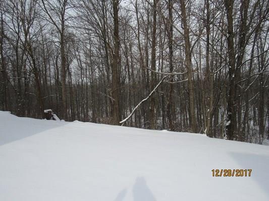 763 Wood Hill Drive, Walworth, NY - USA (photo 2)