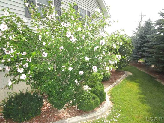 231 Brittany Boulevard, Onsted, MI - USA (photo 5)