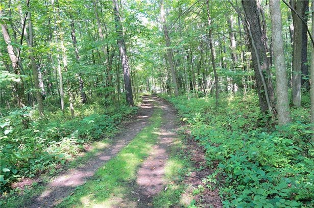 Lot 23 Button Shores Road, Van Buren, NY - USA (photo 1)