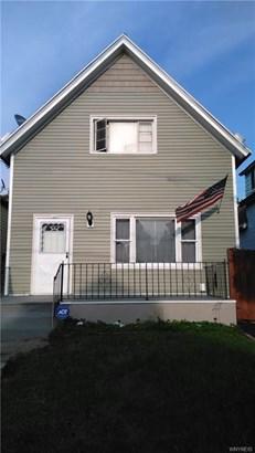387 Herkimer Street, Buffalo, NY - USA (photo 1)