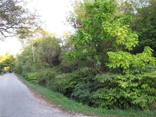 Ries St, Norton, OH - USA (photo 4)