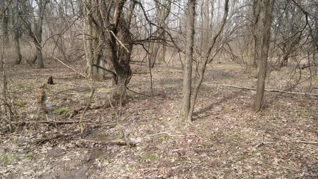 7326 State Route 19 Unit 9, Lots 159-160, Mount Gilead, OH - USA (photo 1)