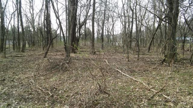 7326 State Route 19 Unit 9, Lots 159-160, Mount Gilead, OH - USA (photo 2)