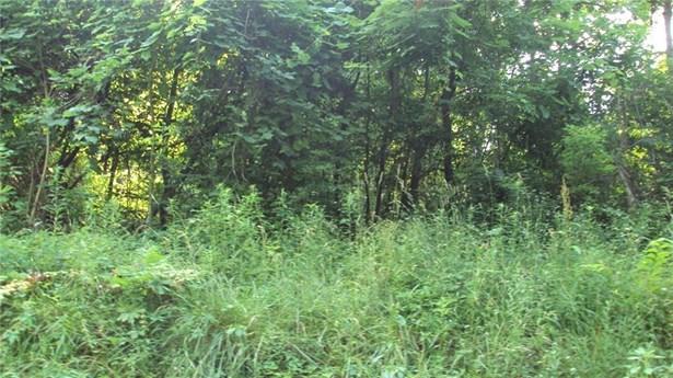 Lots 518- 521&618-621 Beech Street, Linesville, PA - USA (photo 1)