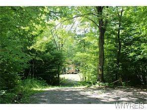 8905 Swift Hill Road, Centerville, NY - USA (photo 4)