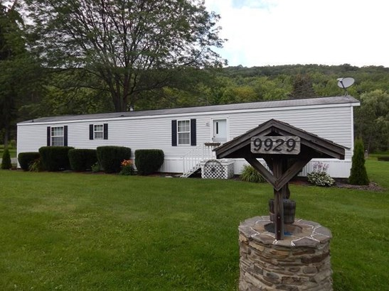 9929 Lake Hollow Road, Cohocton, NY - USA (photo 1)