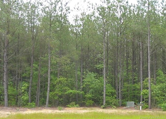 Lot 47 Plantation Place, Little Plymouth, VA - USA (photo 1)