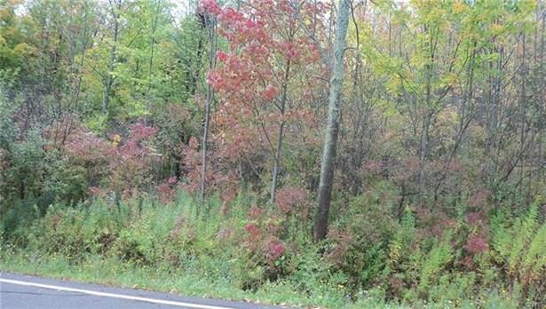 0 Oak Hill Road, Otisco, NY - USA (photo 1)