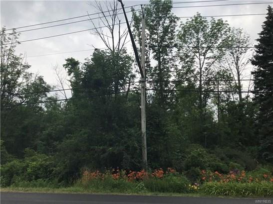 V/l Ellicott Road, Orchard Park, NY - USA (photo 1)