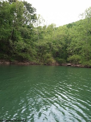 Lot 14 Cove Run Club Road, Moatsville, WV - USA (photo 2)