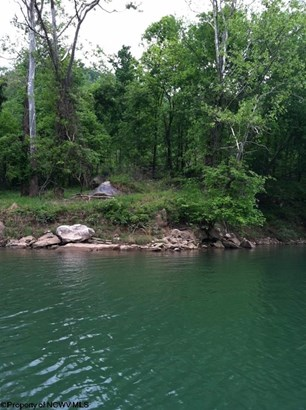 Lot 14 Cove Run Club Road, Moatsville, WV - USA (photo 3)