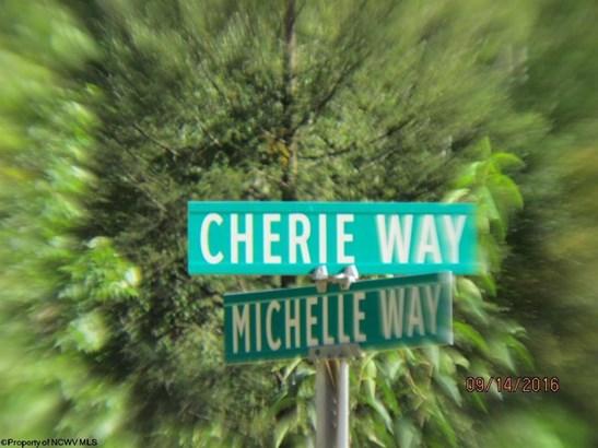 Lot 14 Cove Run Club Road, Moatsville, WV - USA (photo 5)