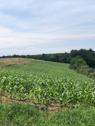 897 Messersmith Road, Clearville, PA - USA (photo 5)