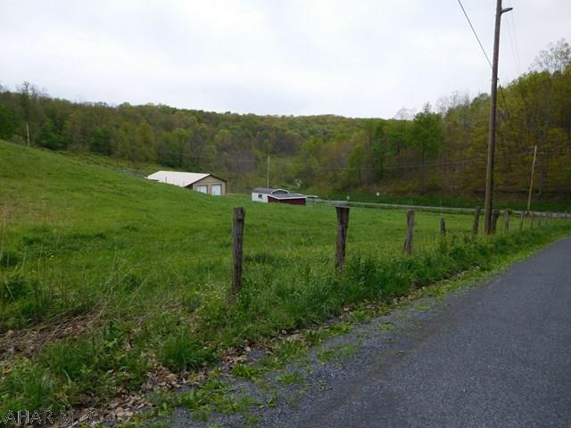 290 Oldham Road, Alum Bank, PA - USA (photo 2)