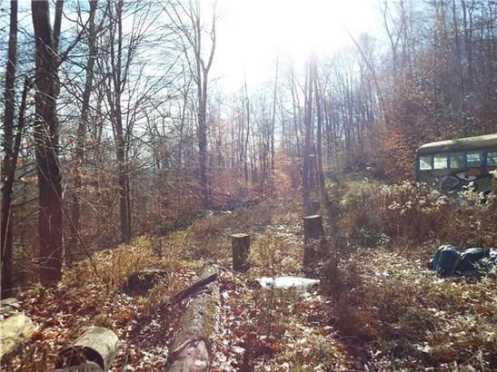 0 Old Log Road, Portville, NY - USA (photo 3)