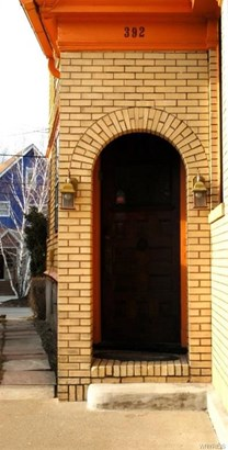 392 Porter Avenue, Buffalo, NY - USA (photo 3)