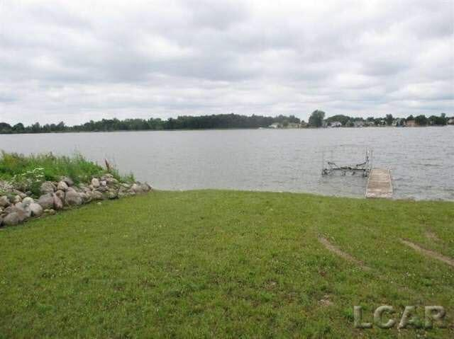 8411 Odowling Dr, Onsted, MI - USA (photo 1)