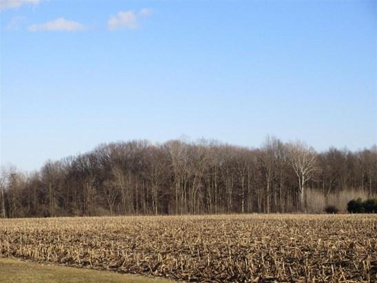 0 Mckean, Willis, MI - USA (photo 1)