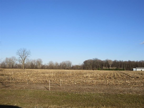 0 Mckean, Willis, MI - USA (photo 5)