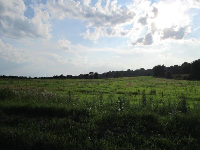 0 Twp Rd 20, Cardington, OH - USA (photo 2)