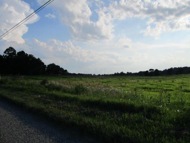 0 Twp Rd 20, Cardington, OH - USA (photo 3)