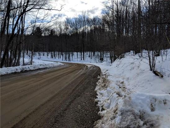 0 Jordan Hill Road, Clarksville, NY - USA (photo 3)