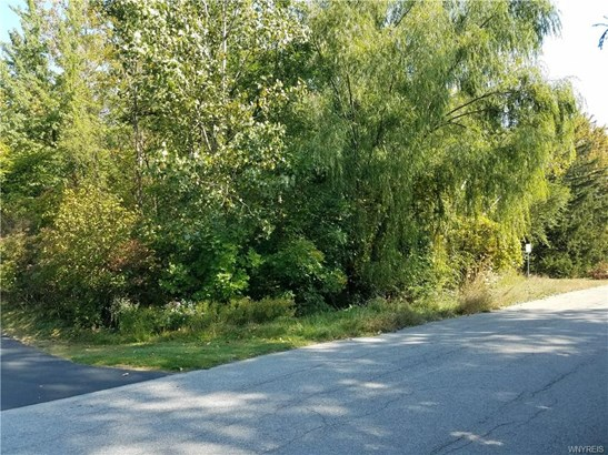 5192 Willowbrook Drive West, Clarence, NY - USA (photo 1)
