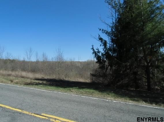 11565-11643 Mariaville Rd, Pattersonville, NY - USA (photo 1)