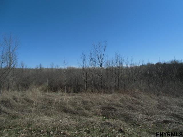 11565-11643 Mariaville Rd, Pattersonville, NY - USA (photo 2)