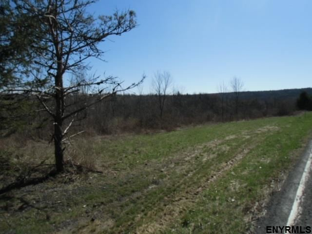 11565-11643 Mariaville Rd, Pattersonville, NY - USA (photo 5)
