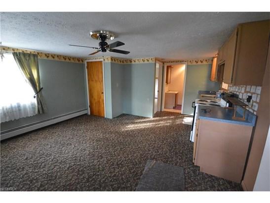 348 N Amboy Rd, Conneaut, OH - USA (photo 3)