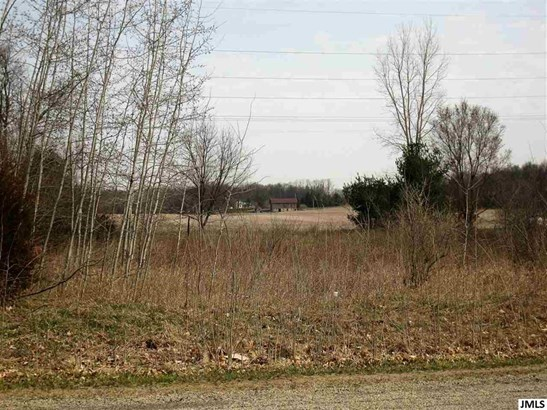 13822 Northmoor Dr, Cement City, MI - USA (photo 2)
