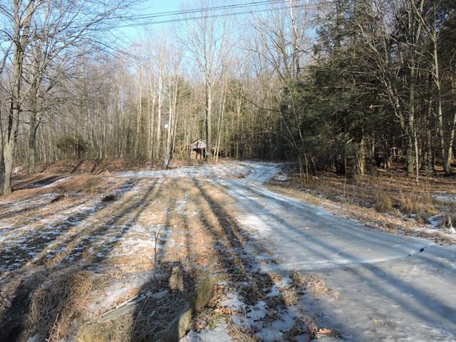 1154 Goose Hill Rd, Wyalusing, PA - USA (photo 1)