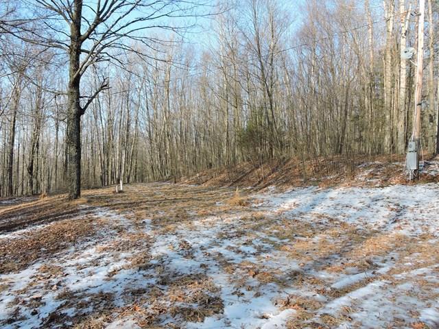 1154 Goose Hill Rd, Wyalusing, PA - USA (photo 2)