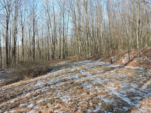 1154 Goose Hill Rd, Wyalusing, PA - USA (photo 3)