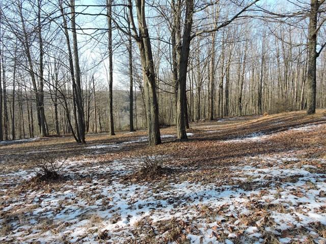 1154 Goose Hill Rd, Wyalusing, PA - USA (photo 5)