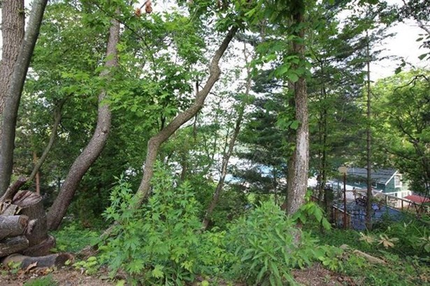 0 Hillside, Pinckney, MI - USA (photo 2)