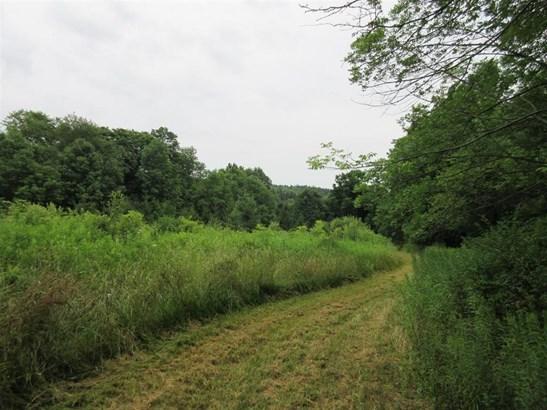 0 Wothe-freeman Road, Lincklaen, NY - USA (photo 5)