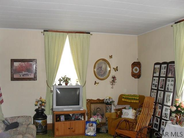249 Romania Road, Meyersdale, PA - USA (photo 5)