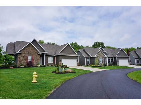 Vl Briarthorn Crescent, Wadsworth, OH - USA (photo 2)