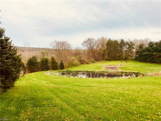 1291 River Woods Dr, Hinckley, OH - USA (photo 4)