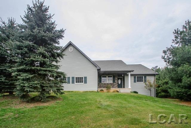 1120 Pine Grove Lane, Clinton, MI - USA (photo 2)