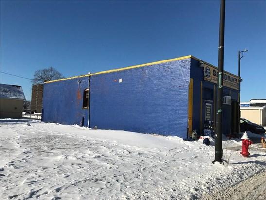 278 Trenton Avenue, Buffalo, NY - USA (photo 3)