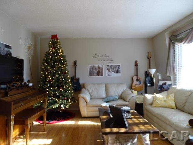 3192 White, Lambertville, MI - USA (photo 2)