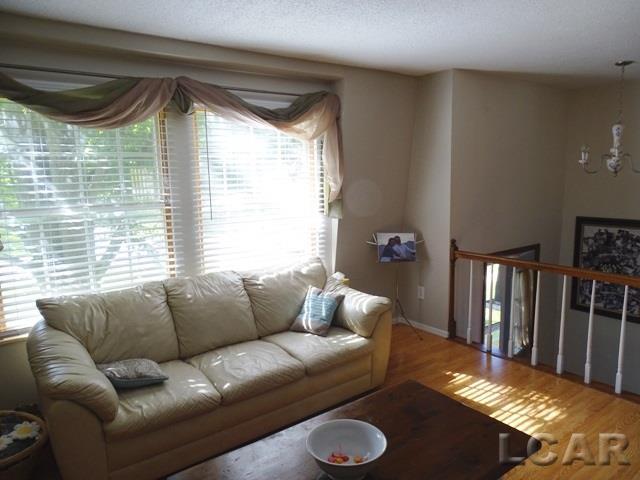 3192 White, Lambertville, MI - USA (photo 3)