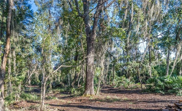 Residential Lot - Brunswick, GA