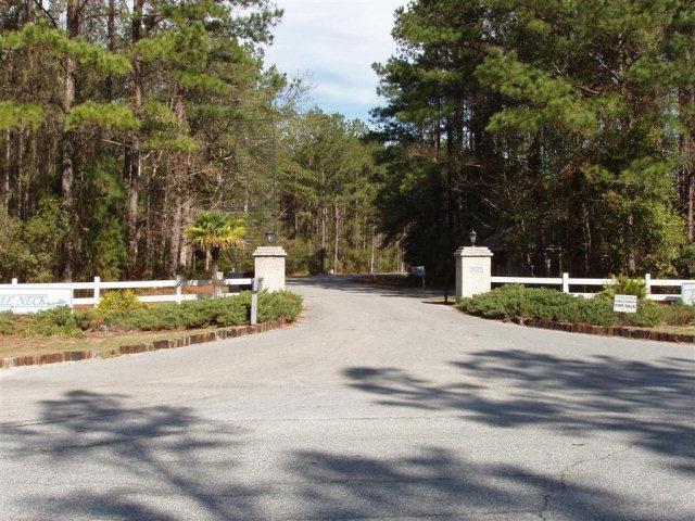 Residential Lot - Townsend, GA