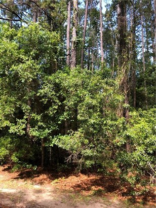 Residential Lot - Townsend, GA