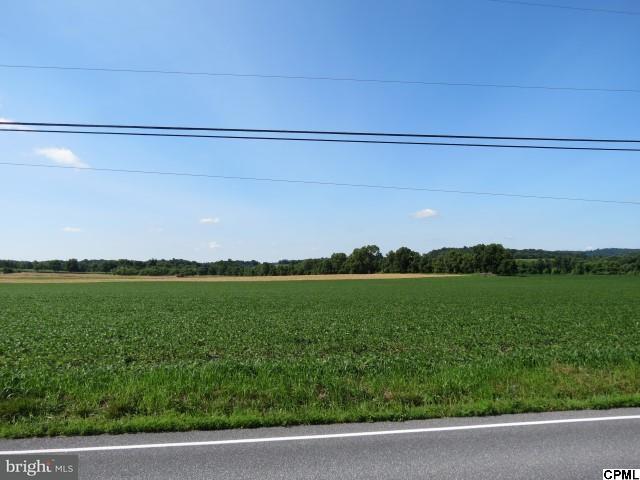 2167 Bachmanville Lot, Hershey, PA - USA (photo 2)