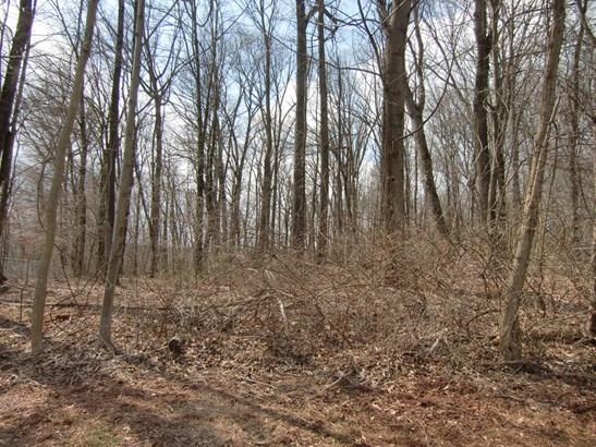 Front Land (photo 2)